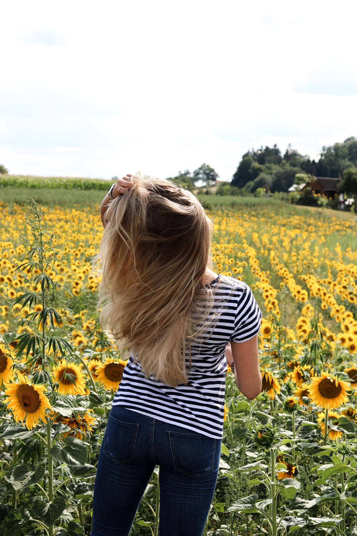 Outfit Sonnenblumenfeld